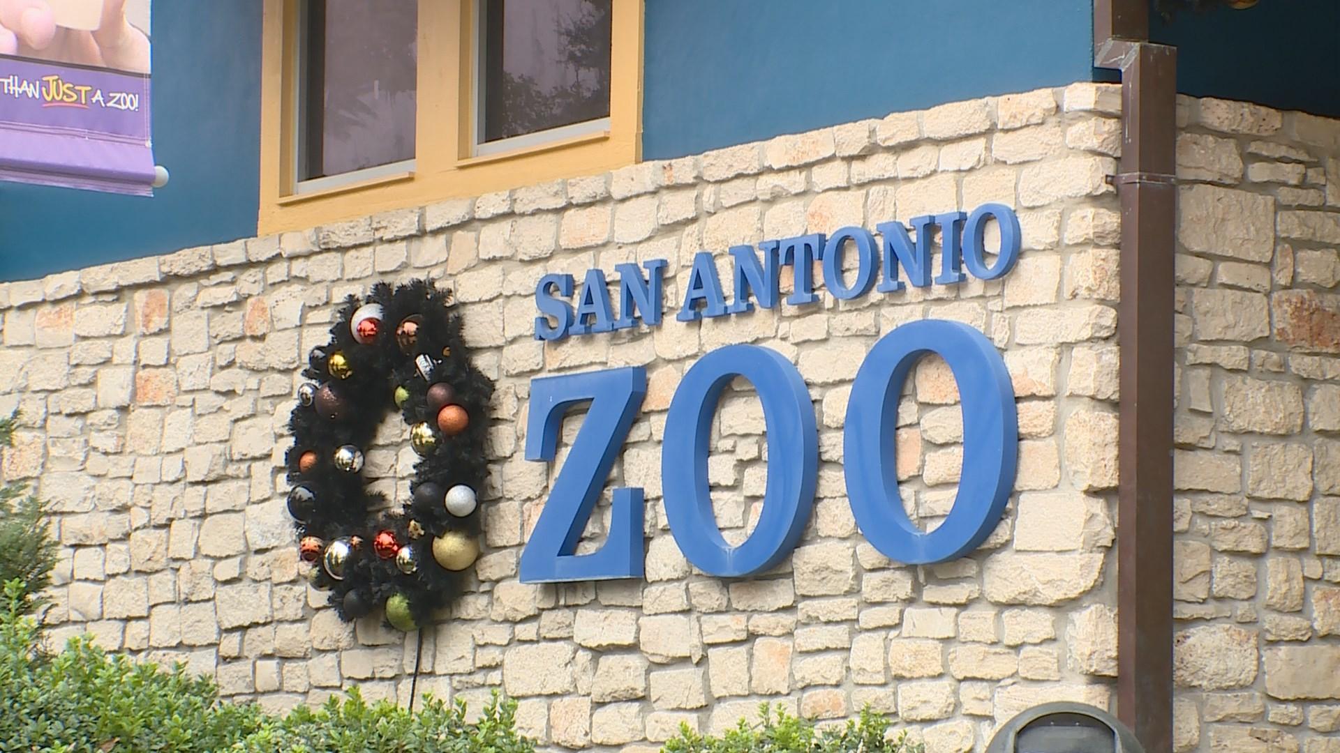 S A Zoo Seeking More Than 100 Job Candidates Kens5 Com